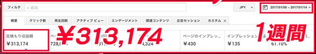 アド戦士・1週間、313174円.PNG